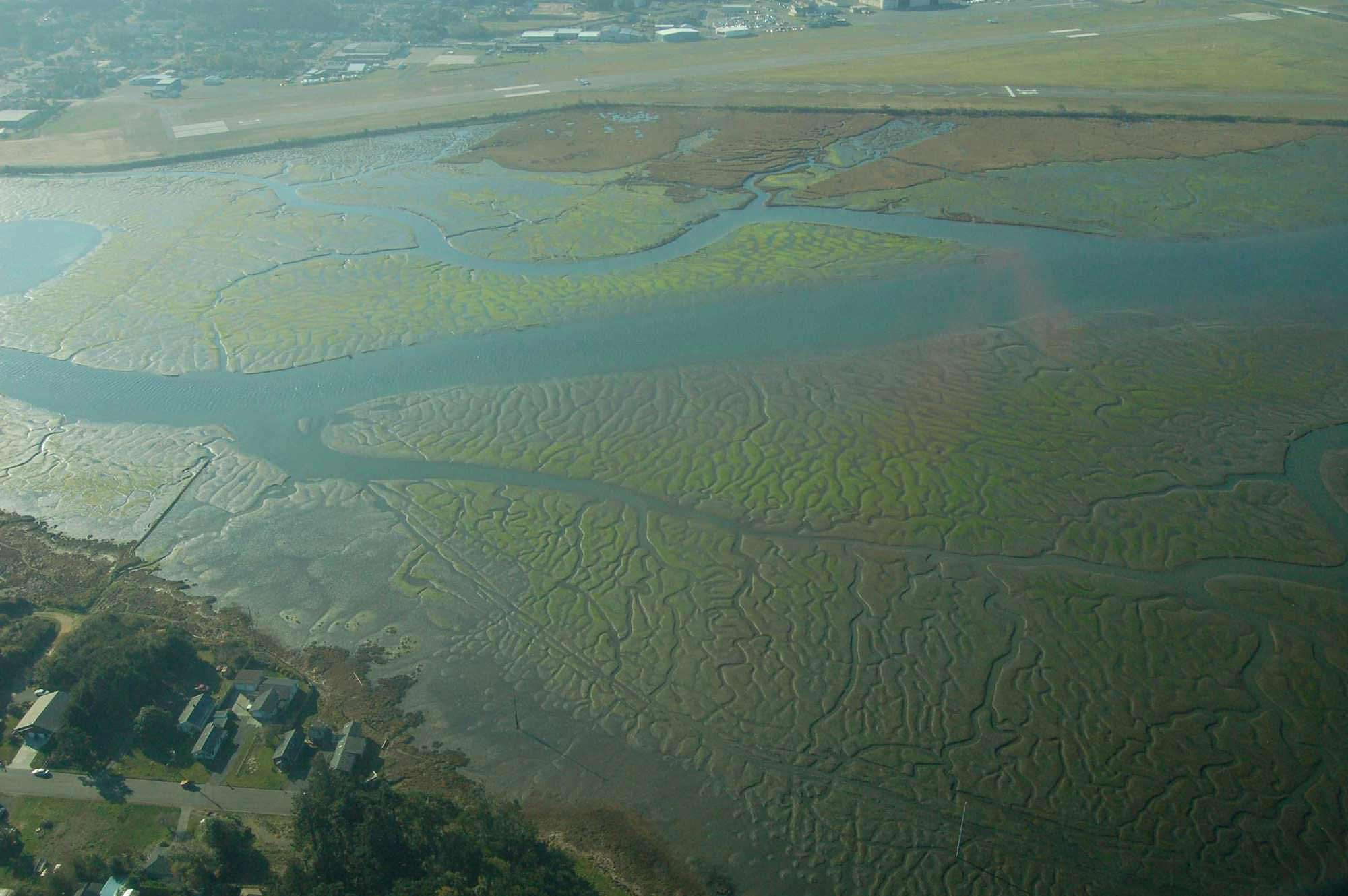 Coos Bay: Pony Slough