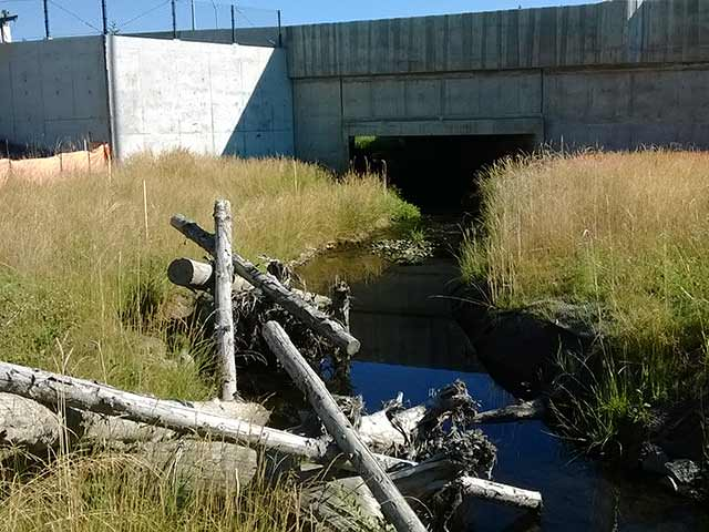 Eastside Transity and HOV Fish Passage