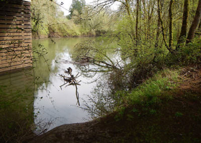 Willamette Water Supply Program Preliminary Design and Permitting